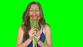Sexy smiling girl smelling tulip flowers. Pretty female holding flowers. In her hands. Green chroma key even background. Static shot. 4K UHD stock video footage