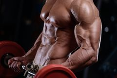 Sexy strong bodybuilder athletic men pumping up muscles with dum. Sexy strong bodybuilder athletic fitness man pumping up abs muscles workout bodybuilding Stock Photo