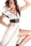 stunning brunette beauty Royalty Free Stock Photos