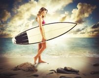 Sexy surfer girl Stock Image