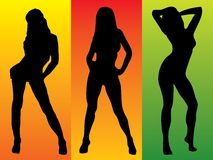 Sexy three colour Royalty Free Stock Image