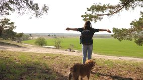 Sexy traveler girl with a backpack on her shoulders and a dog straightens her arms to the side enjoying freedom. Dog. Breeder walking with his beloved dog stock video