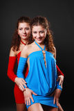 Sexy twins embracing. Young woman hugs her sister. The attractive girls are gemini. They are looking at camera and smiling. Pretty twins are wearing the same Royalty Free Stock Image