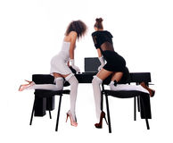 Sexy two women at office with a laptop Stock Photos