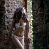 Sexy underwear model Stock Photography