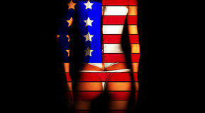 US Lady. An image of a female in her underwear stock illustration
