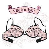 Sexy vintage pink bra. On white background. Retro vector illustration Royalty Free Stock Photography