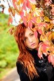 Sexy vrouw en rode bladeren royalty-vrije stock foto's
