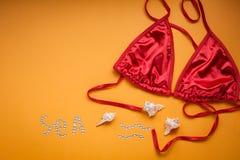 Sexy weibliche Fahrwerkbeine auf Sommerferien extrahieren copyspace Lizenzfreie Stockbilder
