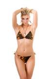 Sexy wild woman Royalty Free Stock Image