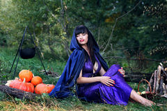 Sexy witch near pumpkins Stock Images