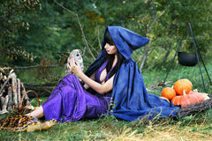 Sexy witch with an owl Stock Photography