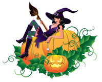 Sexy witch  with pumpkin, Royalty Free Stock Photos