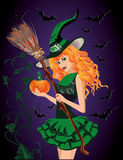 Sexy witch and pumpkin, halloween card. Vector illustration Stock Image