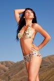 woman in bikini Royalty Free Stock Photography