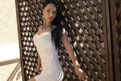 Sexy woman with black hair in elegant dress with bijou. Fashion photo of sexy glamour model with black hair in elegant white dress with bijou Royalty Free Stock Image