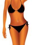 Sexy woman body Royalty Free Stock Photos