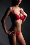 Sexy woman body Stock Photo