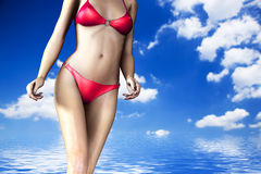 woman body in summer royalty free illustration