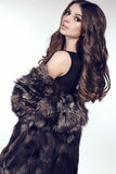 Sexy woman with dark hair in luxurious fur coat Stock Photo