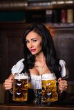woman in dirndl dress holding Oktoberfest beer stein. royalty free stock photos