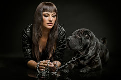 Sexy woman with dog Stock Photos