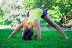Sexy woman doing stretching exercises in summer park Stock Photos