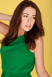 Sexy Woman In Emerald Green Dress Stock Images
