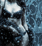 A sexy woman in erotic lingerie on the snow Stock Photo