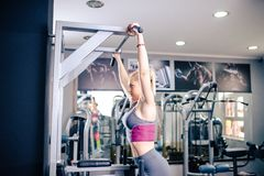 Sexy woman exercising at gym. Arms working out Royalty Free Stock Images