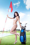 Sexy woman holding golf clubs Stock Images