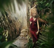 Sexy woman in jungle Stock Image