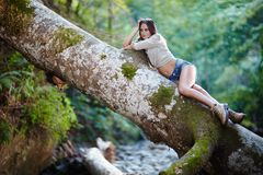 Sexy woman laying on a log Royalty Free Stock Photos