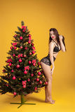 Sexy woman in lingerie near a Christmas tree Stock Photos
