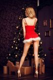 Sexy woman with long legs in red christmas santa dress Royalty Free Stock Photo