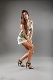 Sexy woman in mini dress Stock Image