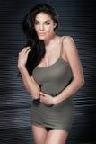 Sexy woman posing. Royalty Free Stock Photos