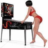 Sexy Woman Posing On A Pinball Stock Images