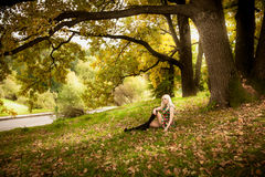 Sexy woman relaxing under old oak tree at autumn Royalty Free Stock Photography