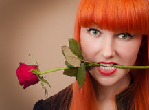Sexy woman with a rose in her mouth Stock Photos