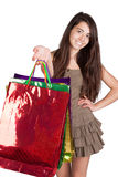 Woman with shoping bags. The woman with colorful bags shoping stock photo