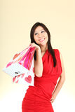 Sexy Woman Shopping With Bags Stock Photos
