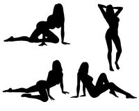 Sexy woman silhouette's Stock Photos
