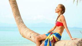 Sexy woman sitting on a palm tree at the beach Stock Image