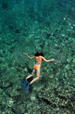 Sexy woman snorkeling Royalty Free Stock Image