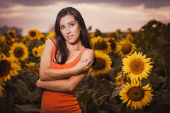 Sexy woman in a sunflower's field Royalty Free Stock Photo