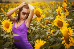Sexy woman in a sunflower's field Stock Images