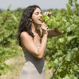 Sexy woman in vineyard Royalty Free Stock Photography