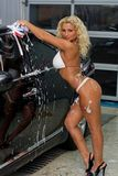 Sexy woman washing car Stock Photography
