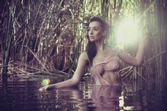 woman in water royalty free stock images